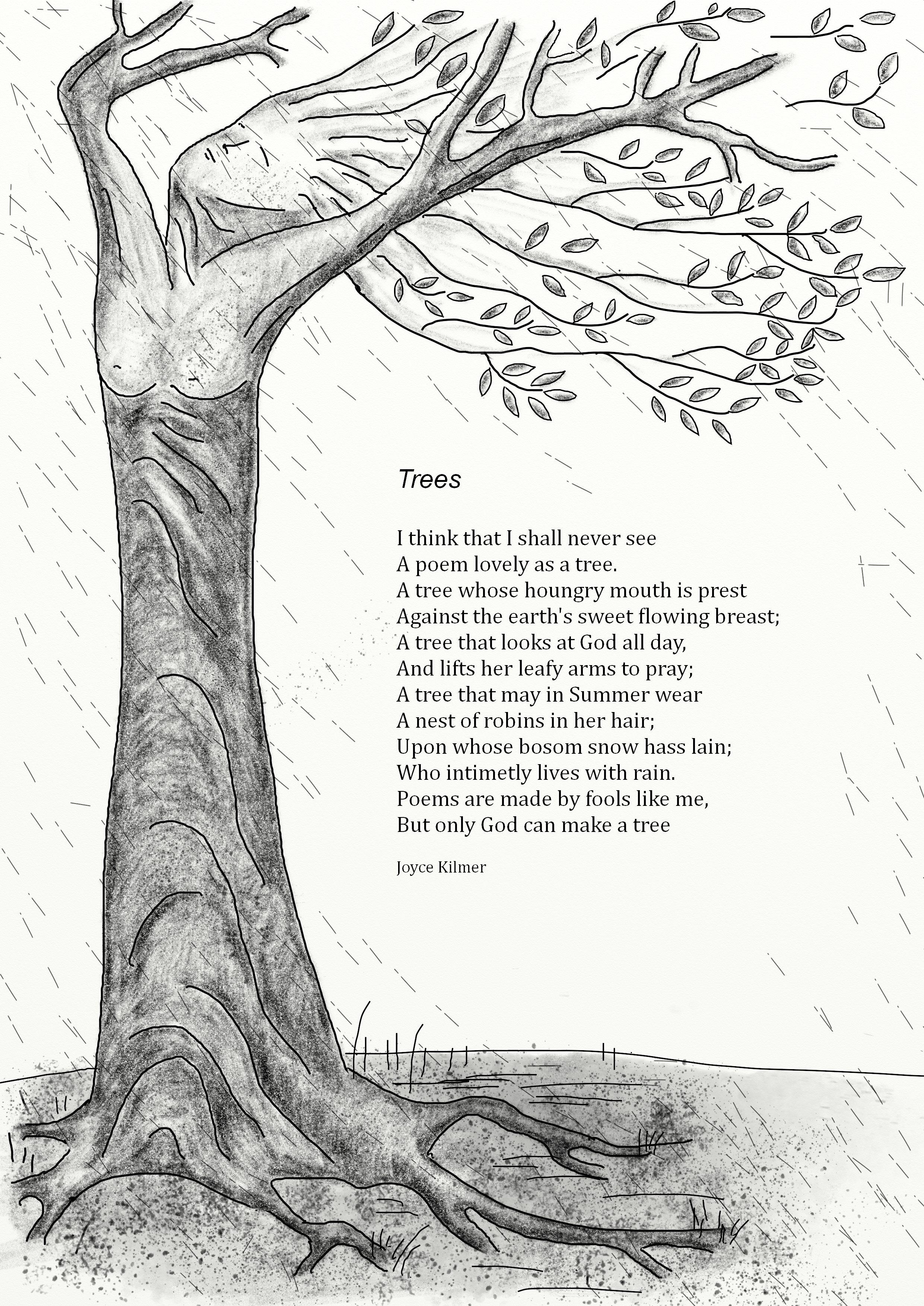 trees--poem-