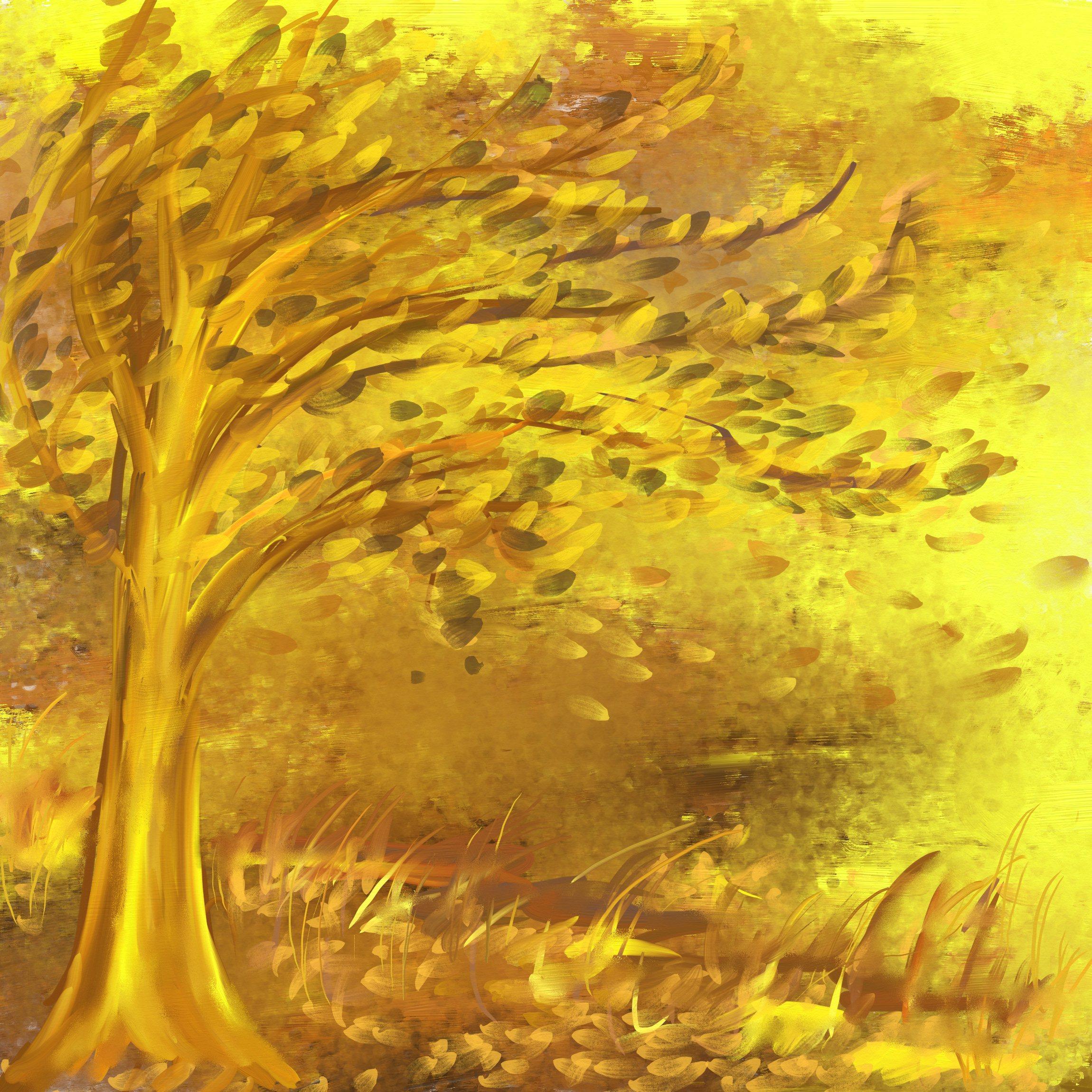 drzewo-na-wietrze